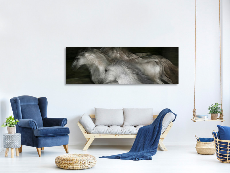 Panoramic Canvas Print Into The Dark