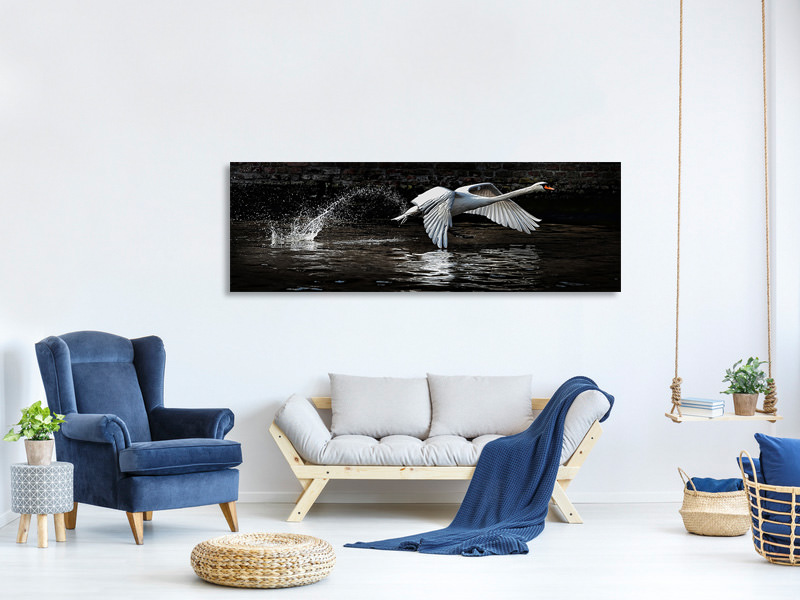 Stampa su tela Panoramica Flying Swan