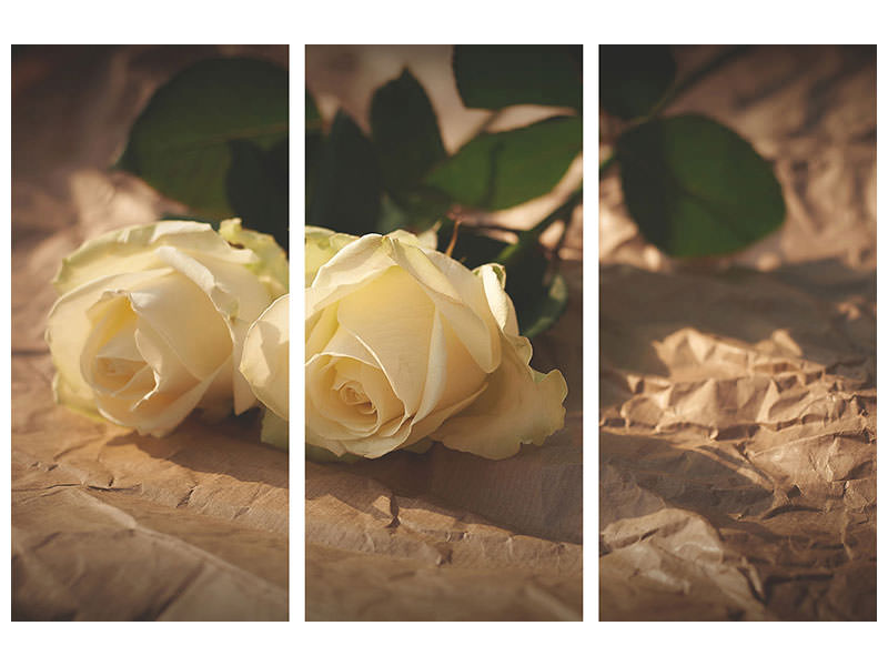 3 Piece Canvas Print The purity of the roses