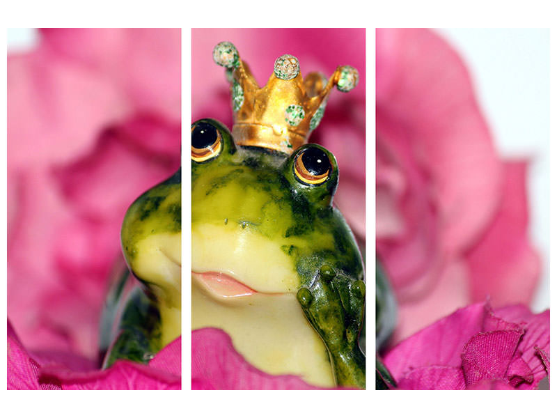3 Piece Canvas Print The Frog Prince