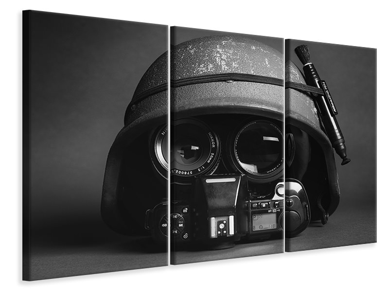 3 Piece Canvas Print Stay Frosty