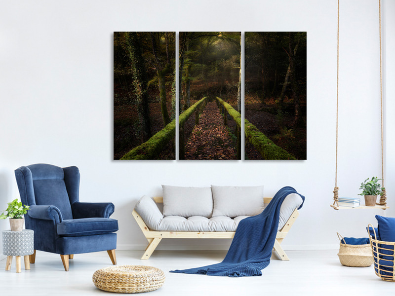 3 Piece Canvas Print The Way To The Forest