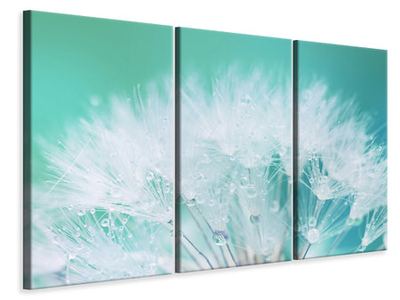 3 Piece Canvas Print Close Up Dandelion In Morning Dew