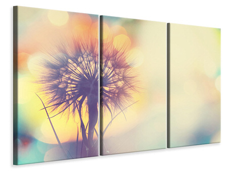 3 Piece Canvas Print The Dandelion In The Light