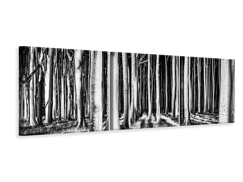 Panoramic 3 Piece Canvas Print Ghost Forest