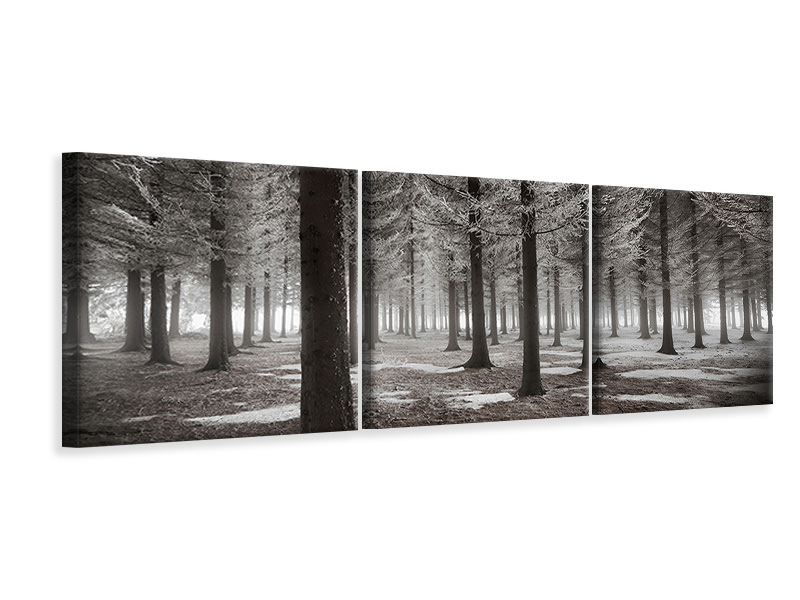 Panoramic 3 Piece Canvas Print The Onset Of Winter