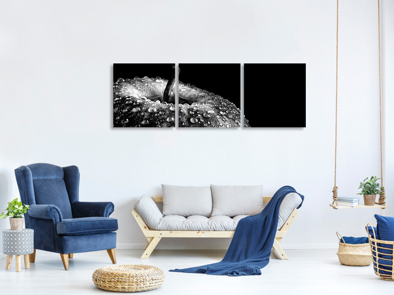 Panoramic 3 Piece Canvas Print Appel