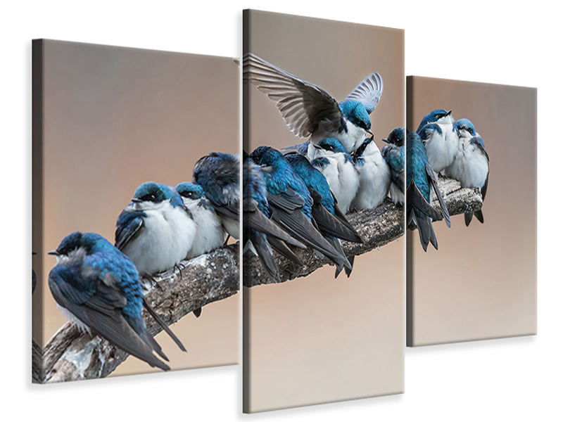 Modern 3 Piece Canvas Print I Will Make Myself Some Room