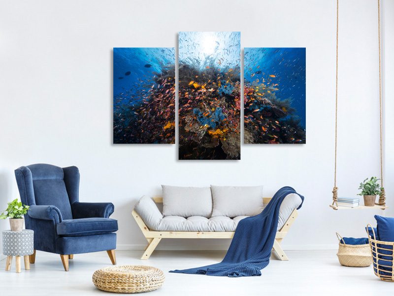 Modern 3 Piece Canvas Print Life Explosion