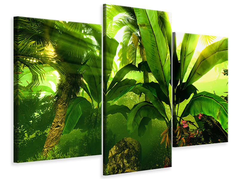 Modern 3 Piece Canvas Print Sunrise In The Rainforest