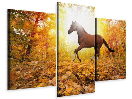 Modern 3 Piece Canvas Print Whole Blood In Autumn Forest