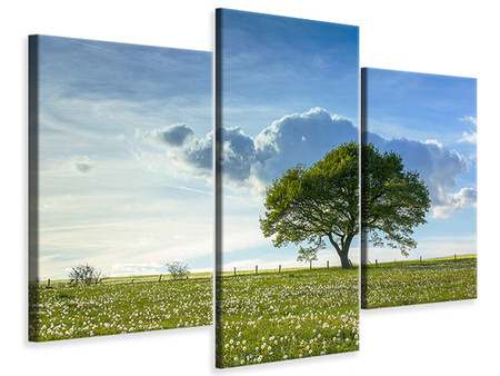 Modern 3 Piece Canvas Print Spring Tree