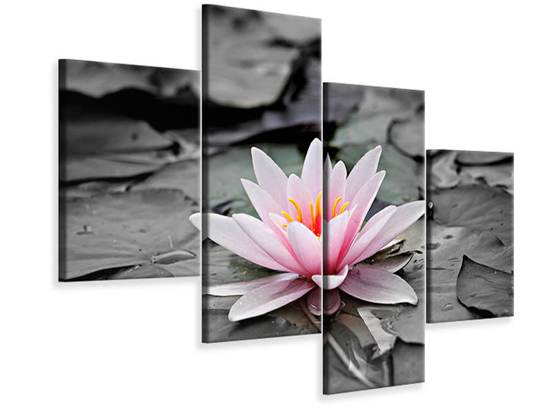 Modern 4 Piece Canvas Print The art of water lily