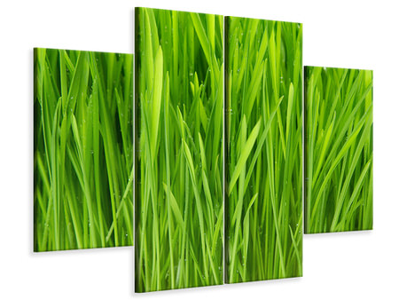 4 Piece Canvas Print Grass In Morning Dew