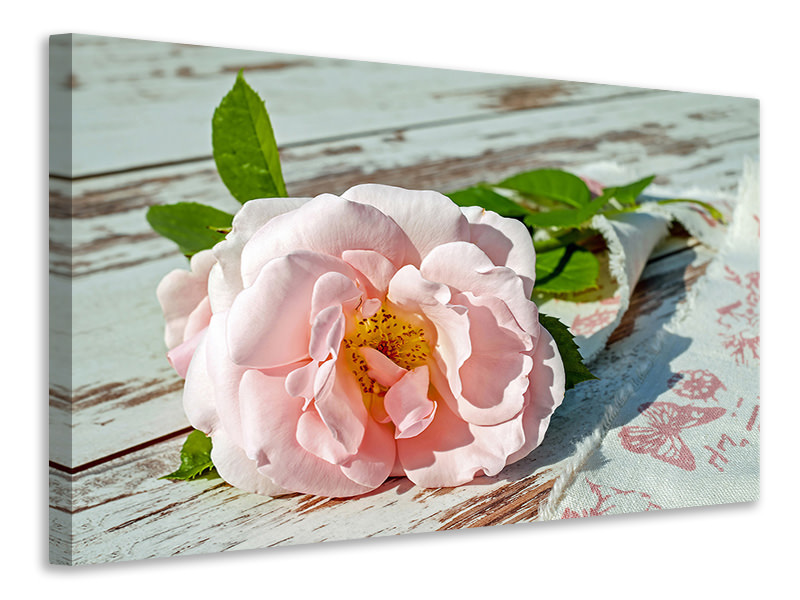 Canvas print Wild rose in pink