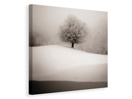 Canvas print Winter Degradee