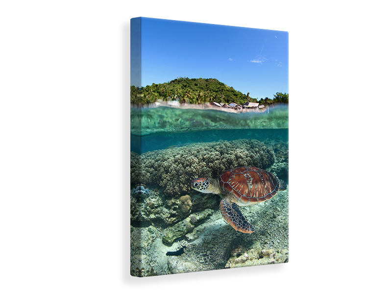 Canvas print Along Shore
