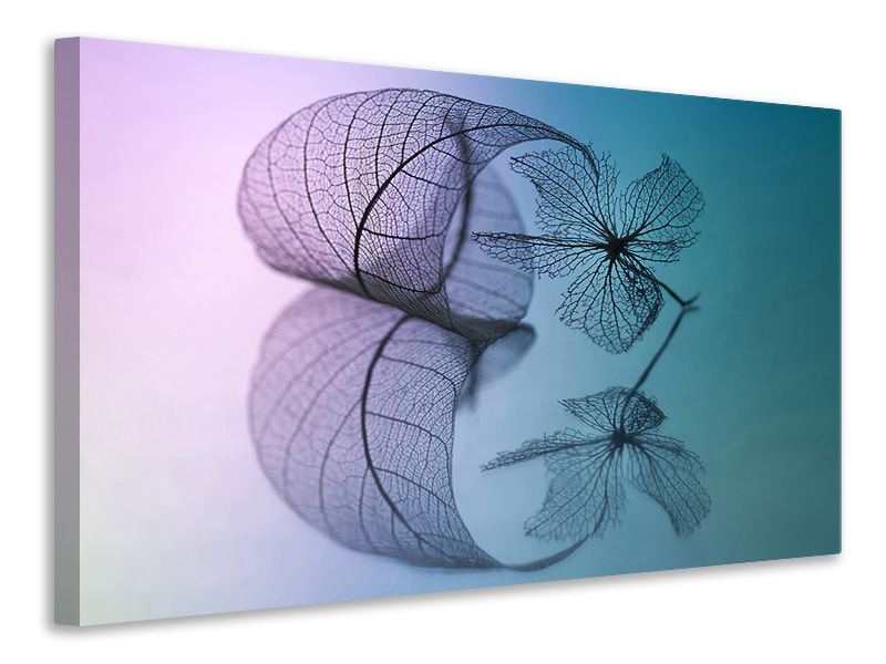 Canvas print Story Of Leaf And Flower