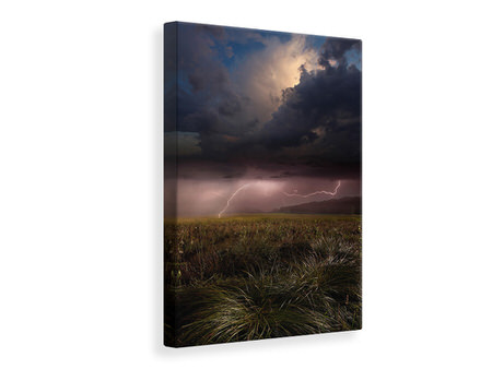 Canvas print Summer Lights