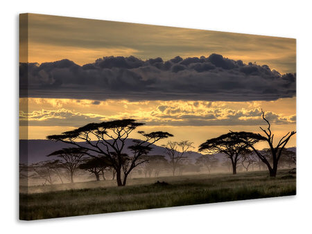 Canvas print Good Evening Tanazania