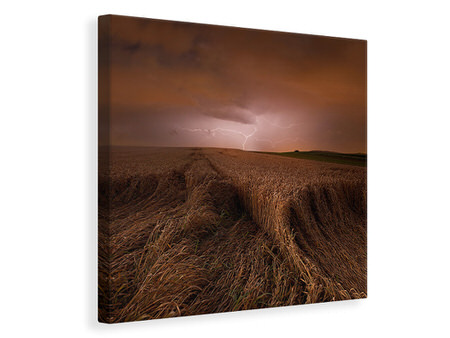 Canvas print Morning Storm