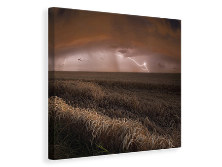 Canvas print Harvest Lights