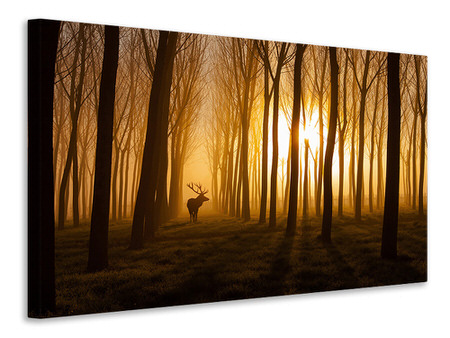 Canvas print Once Upon A Time