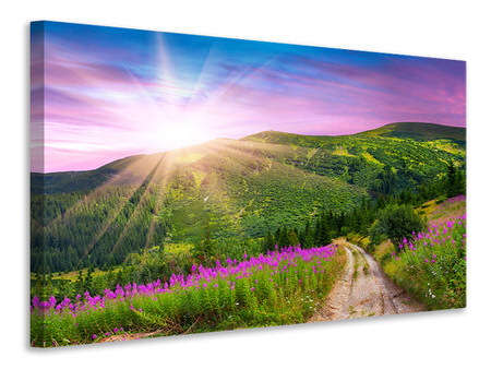 Canvas print A Summer Landscape At Sunrise