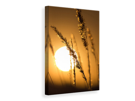Canvas print Romantic Sunset