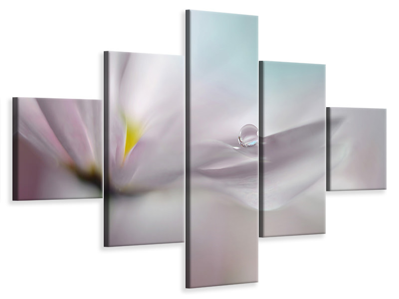 5 Piece Canvas Print Where Dreams Come True