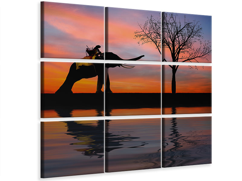 9 Piece Canvas Print Elephant in the evening light